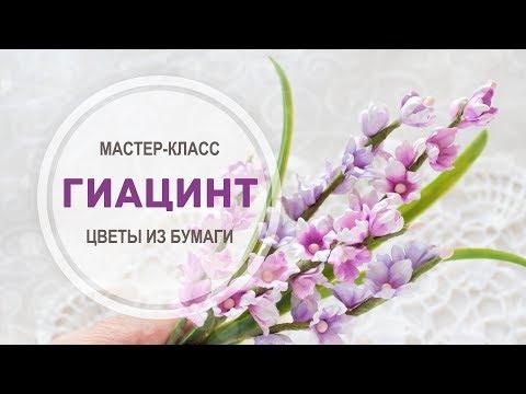 """Фото-МК """"Гиацинт"""""""
