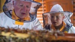 ICKO maison d'apiculture depuis 1947 thumbnail