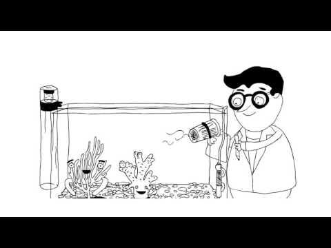 Тиовит Джет - эффективный препарат для защиты от мучнистой