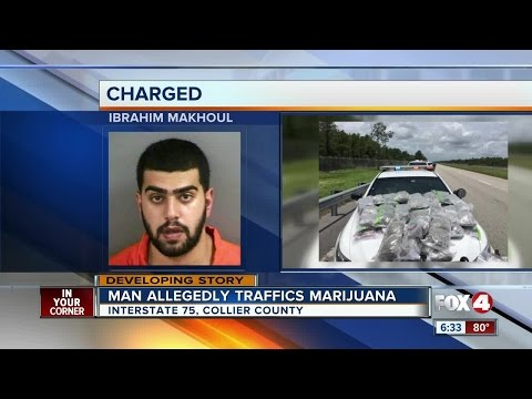 43 pounds of marijuana confiscated in Alligator Alley bust