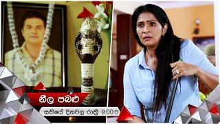 බියවද්දා අතුරුදහන් වූ නාග මායාව | Neela Pabalu | Sirasa TV Thumbnail