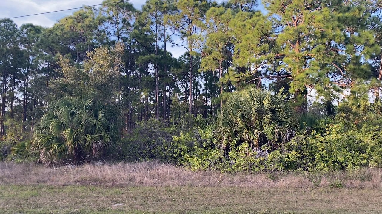 0.23 Acres With Utilities in Charlotte County, Florida - Property Video