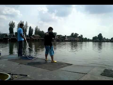 Mekong feel 2