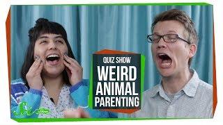 SciShow Quiz Show: Weird Animal Parenting