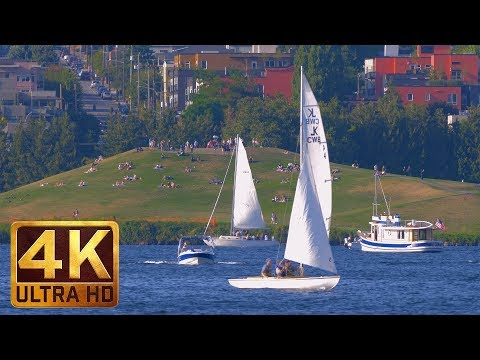 3 Hours - 4K Urban Relaxation Video | Nature Sounds - Seattle Lake Union Park