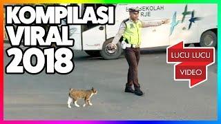 Download Video Kompilasi Video Viral 2018 - GELI! Kucing Hamil - Ulat Bulu MP3 3GP MP4
