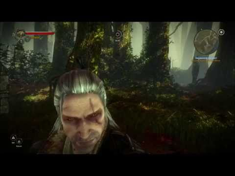 The Witcher 2 - No Bonus Items - Hard Diff (Endrega Queen)
