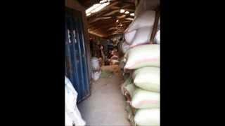 Rice Processing In Tanzania
