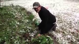 Gardening in Northern Michigan