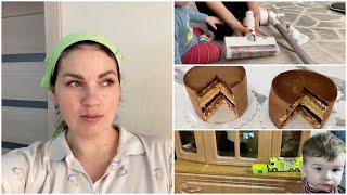 VLOG: Торты близнецы / Про пылесос и ковер /Мама Вика