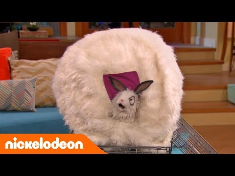 Os Thundermans  Abriguem-se 💨  Portugal  Nickelodeon em Português