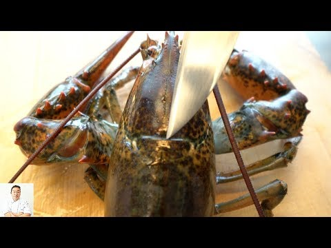 GRAPHIC: LIVE Lobster Fried Rice - 7 Course Special Meal