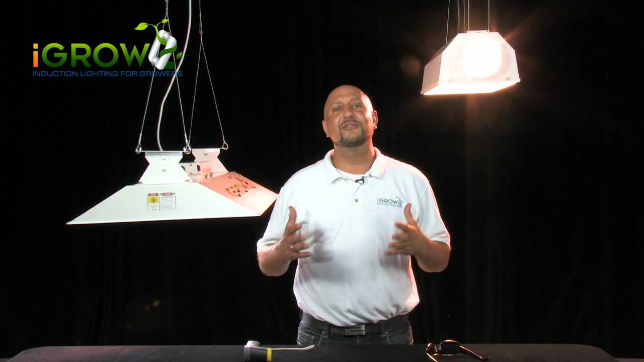 Plant lighting energy efficiency - The end of the 1000 Watt grow light