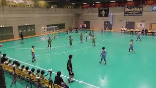 平成30年度 第31回全国小学生ハンドボール大会 女子決勝 浦城小HBC 対 東久留米HBC