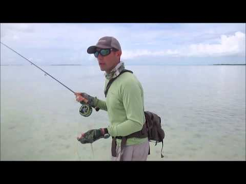 Basic Bonefish Tips And Advice For Fly Fishing