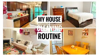 USA | Tamil | My house cleaning routine !