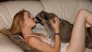 ЛУЧШИЕ ПРИКОЛЫ С ЖИВОТНЫМИ 2014! Прикольные животные! СМЕШНЫЕ КОТЫ