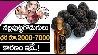 Black Mushroom-Health Benefits |ఎలాంటి అనారోగ్యసమస్యలైన సరే...తరిమికొట్టే నల్ల పుట్టగొడుగులు
