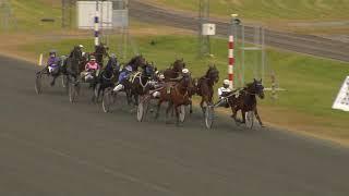 Vidéo de la course PMU PRIX FORDEL TREARIGA