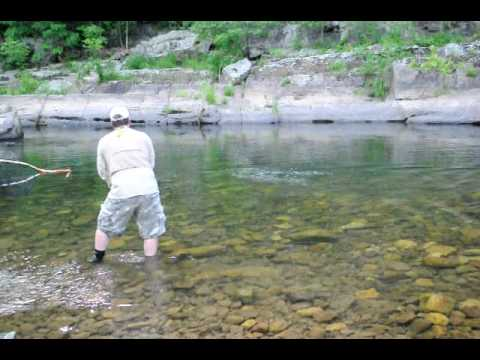 fly fishing west virginia harman 39 s north fork invitational