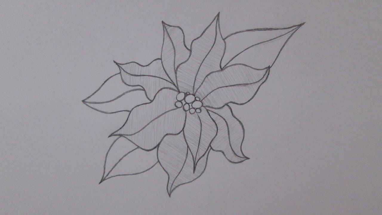 Cómo Dibujar Una Flor De Navidad Youtube