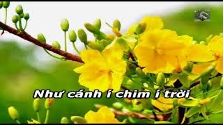Karaoke Hát Chèo _ Lời Chúc Của Mùa Xuân_SL : Hưng Thiên Huy ( Điệu Đào Liễu )