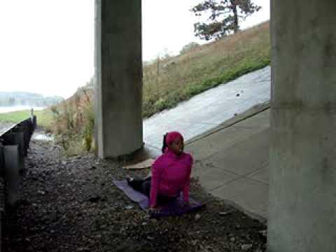 Day 1:  Pennsylvania   27 of 108 Vinyasas   DC-LA Yoga Mala
