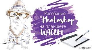 Отрисовка фото в Фотошоп на планшете