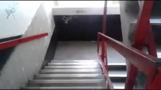 Universidad Jose Maria Vargas