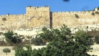 The Western Wall of the Temple Mount including the Golden Gate, Jerusalem (taken from Gethsemane)