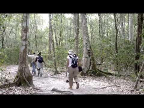 The Lost Kingdom of El Mirador - Bella Guatemala Travel (On Location)