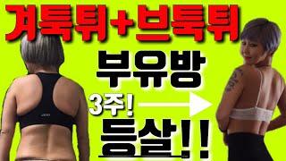 겨툭튀 브툭튀 (겨드랑이살 브라자끈튀어나온살) 틈새운동…