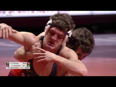 virginia tech vs west virginia wrestling dual highlights