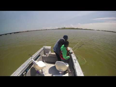 GIGANTIC Lake Erie Channel Catfishing