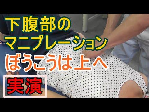 やさしい内臓マニプレーション〜その2 下腹部(結腸と膀胱)