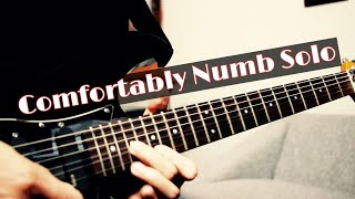 Hi everyone! here is my cover of pink floyd - comfortably numb pulse live version last solo but i mixed it with own style. hope you like it!backing track ...