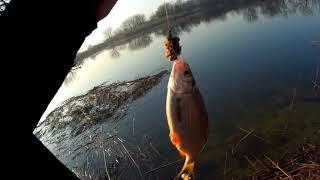 Первый выезд Весенняя плотва Рыбалка сезон 2021