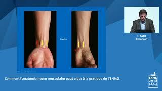 Comment l'anatomie neuro-musculaire peut aider à la pratique de l'E...
