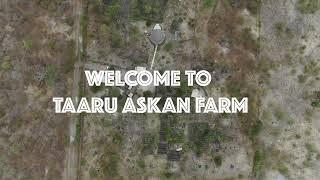 drone footage Taaru Askan Farm