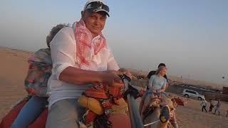 ОАЭ. Пустыня катаемся на верблюд.