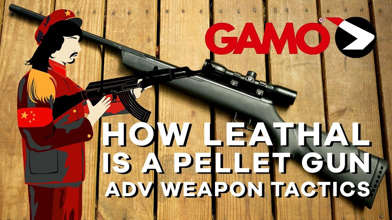 How Lethal is a Pellet Gun?