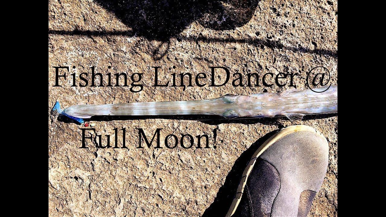 Fishing during a hawaiian full moon with a linedancer for Hawaiian moon fish