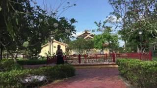 NIEM DAU DI VANG MUOI  Trinh Bay