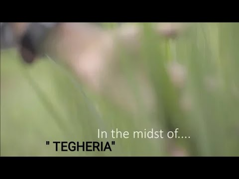 In the midst of....//(tegheria) //  a Mrinmoy Boro film // picnic place Assam // Near Guwahati //