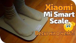 Xiaomi Mi Scale обзор на умные весы от китайцев(, 2016-04-05T13:54:44.000Z)