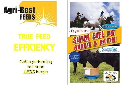 True Feed Efficiency