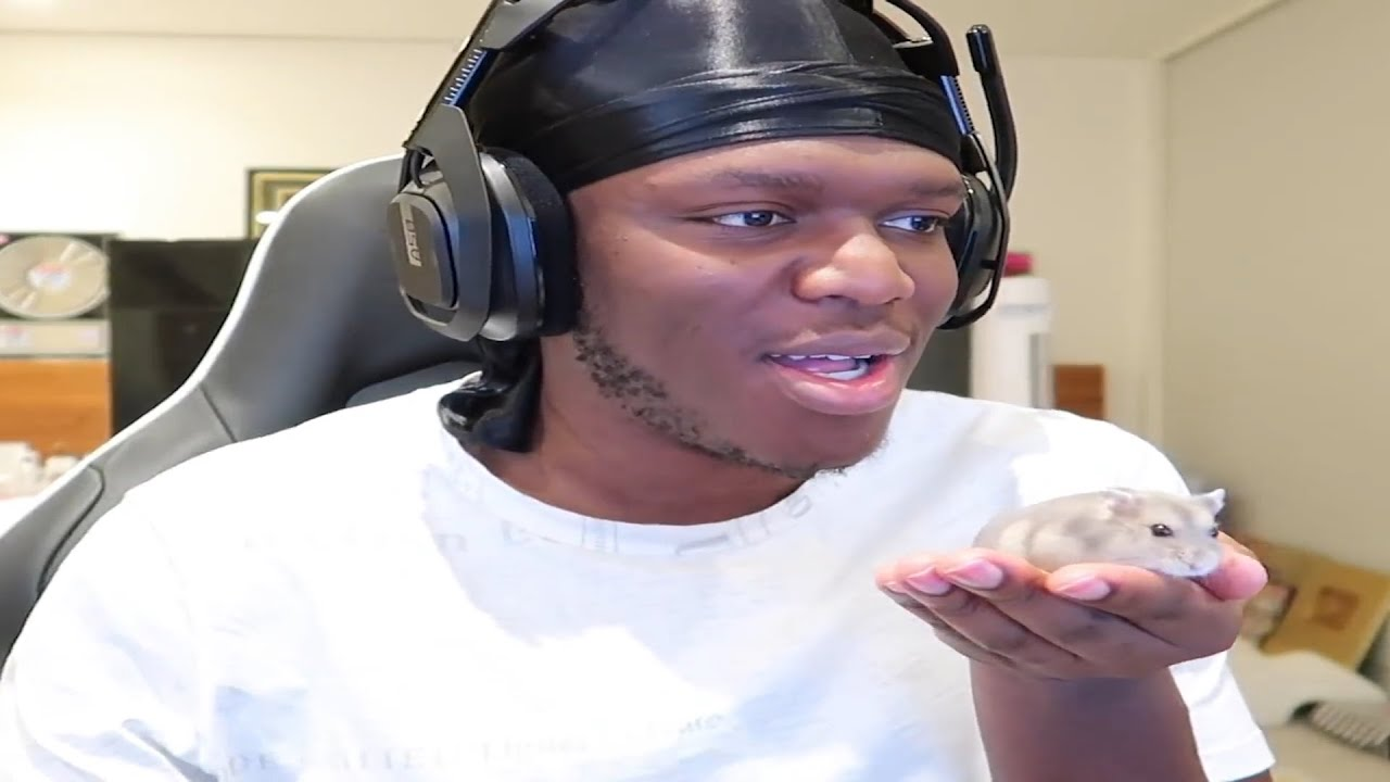 KSI Reacts To His Reddit With His Hamster