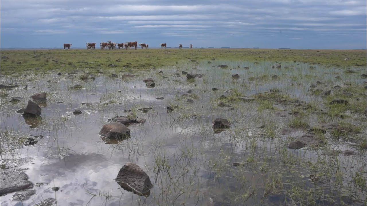 Agua segura para los 82 orgullosos vecinos de Paso de las Piedras