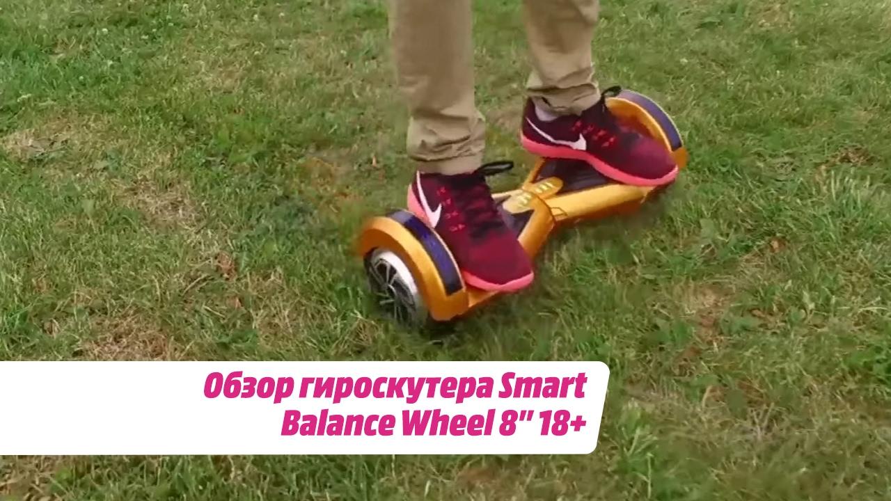 Обзор гироскутера Smart Balance Wheel 8'' 18+