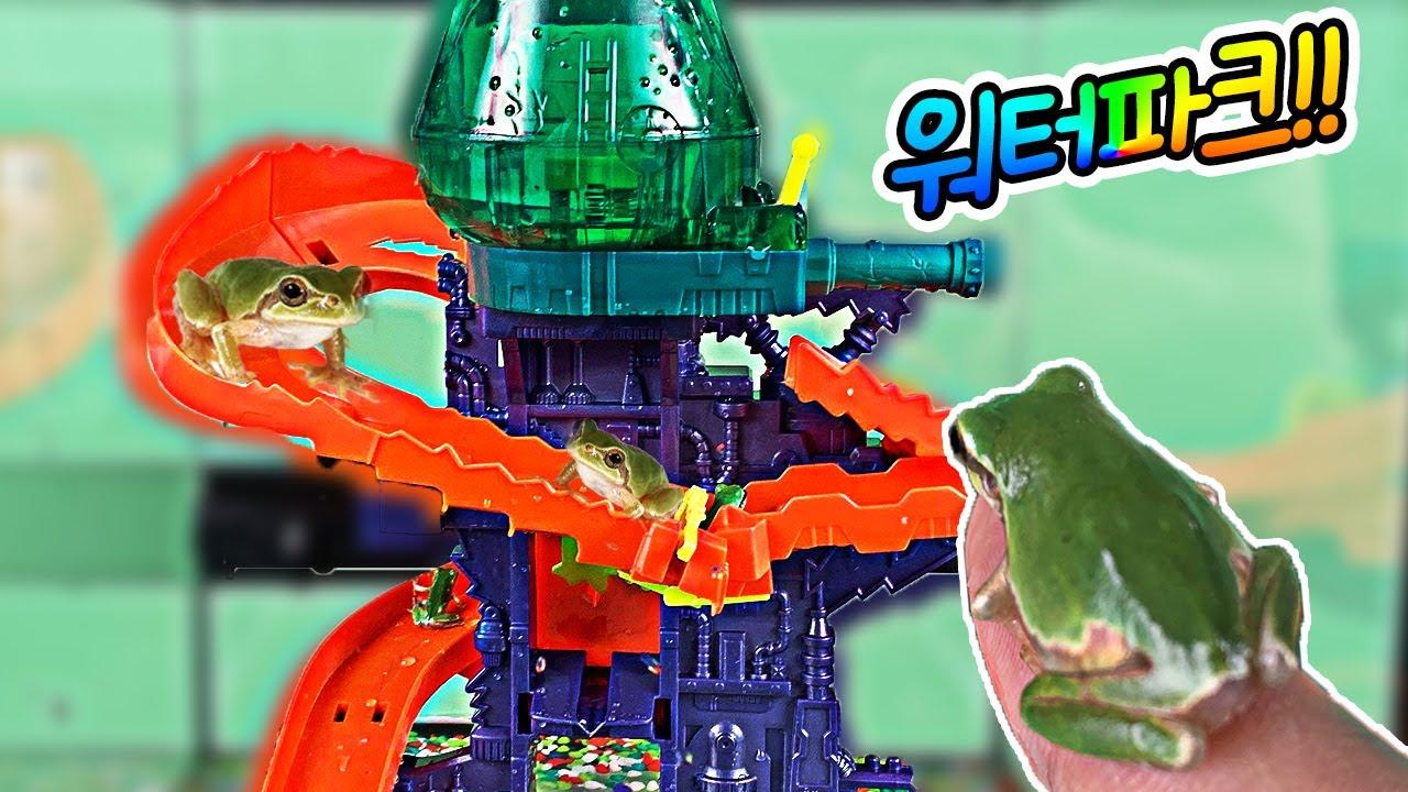 청개구리 워터파크 사육장을 만들었습니다!